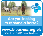 Blue Cross Burford (Herefordshire Horse)
