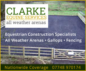 Clarke Equine Services 2021 (Herefordshire Horse)