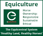 Equiculture 01 (Herefordshire Horse)