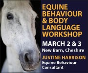Justine Harrison Workshop March 2019 (Herefordshire Horse)