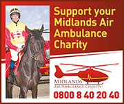 Midlands Air Ambulance (Herefordshire Horse)