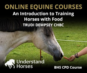 UH - An Introduction To Training Horses With Food (Herefordshire Horse)