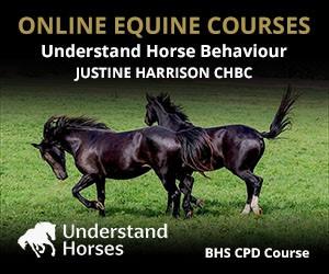 UH - Understand Horse Behaviour (Herefordshire Horse)